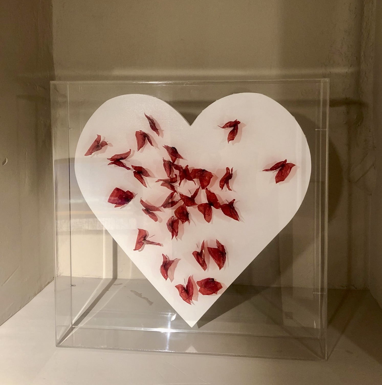 """""""Dolci farfalle"""", 2020, tecnica mista su tela e teca di plexiglass, 55 x 55 cm"""