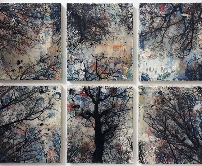 Alberi vertigine, 2021, tecnica mista su tavola, 53 x 66 cm