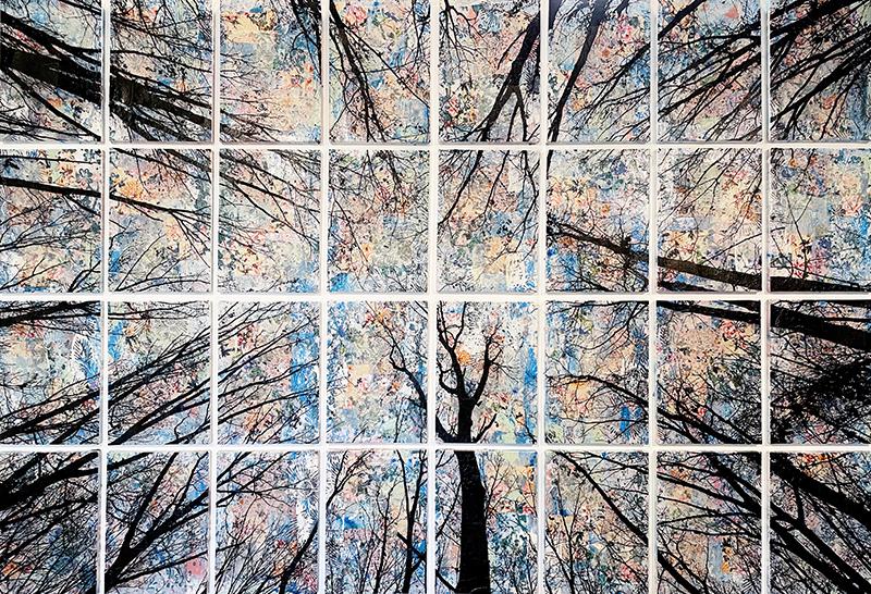Alberi Vertigine, 2021, tecnica mista su tela, 146 x 214 cm
