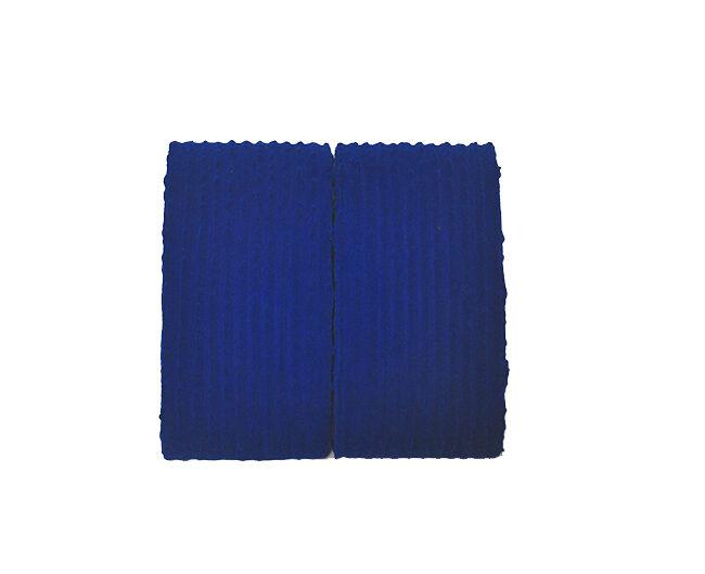 Pittura BL (2 elementi), 2002, tecnica mista, 29 x 30 cm