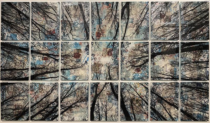 Alberi vertigine, 2020, tecnica mista su tela, 116 x 194 cm