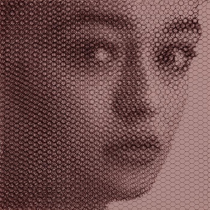 Alida (Elementi per una teoria della Jeune-fille), 2020, dieci livelli di rete metallica intagliati a mano, 80 x 80 cm